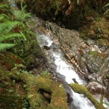 Marchant-Creek-Uckucklesaht-Inlet03