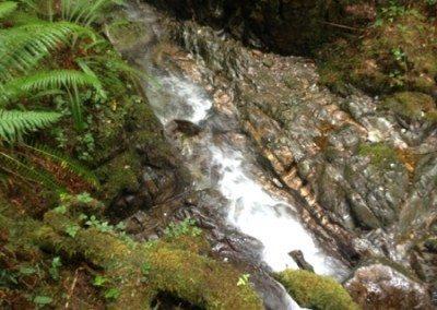 Marchant Creek, Phase 1 – Uckucklesaht Inlet